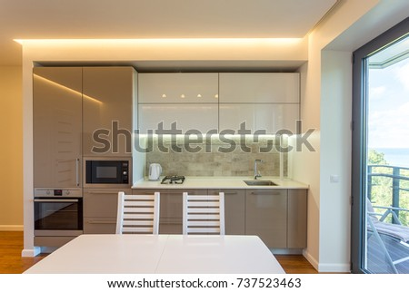 Interior Studio Apartment Kitchen Living Room Stock Photo 737523463 ...