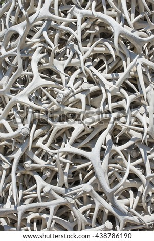 Intertwined elk antler horn sculpture background random curvy twisted texture pattern of white bone color animal shed vertical - stock photo
