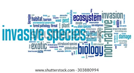 Invasive species - environment issues and concepts word cloud illustration. Word collage concept.