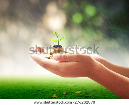 Invest concept. Idea, Market, Bank, CSR, Trust, Wealth, Debt, Hope, Nature Dollar, Seed, Support, Income, Safety, Hand, Value, City, Cash, Grow, Deposit, Bonus, Risk, Gains, Save, Agent, System. - stock photo