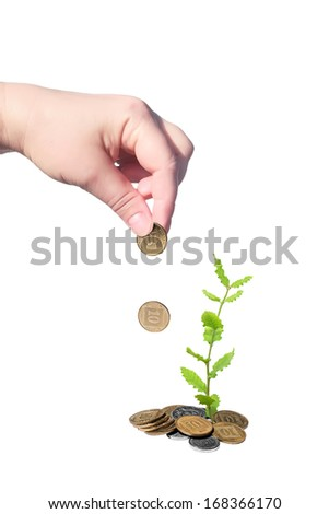 Investing of coins to small green plant growing out of coins isolated on white background  - stock photo
