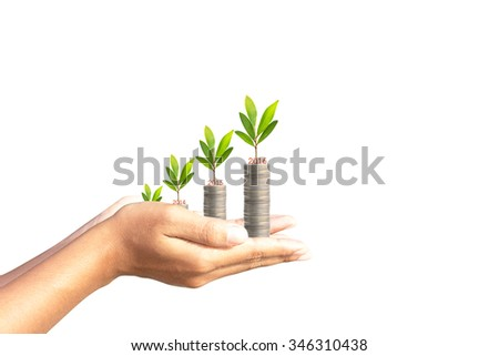 Investment concept,money tree in human hands. High graph in 2016. - stock photo