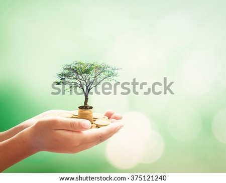 Investment concept. ROI Insurred Idea Market Seed Bank CSR Trust Wealth Day Debt Food Hope Nature Dollar Seed Support Charity Treasure Safety World City Cash Grow Future Deposit Save Bonus Preserve. - stock photo