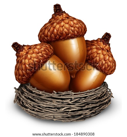 Investment savings financial concept to squirrel away some money as a group of acorns in a nest for business surplus income or personal retirement wealth saved for the future on a white background. - stock photo