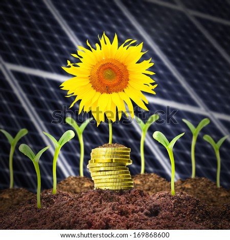 Investments in renewable resources.  - stock photo