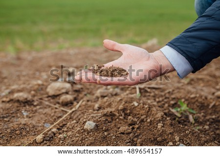 Investor's hand is holding a ground soil. Outdoor background.