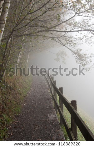 Inviting path leads to foggy eternity - stock photo