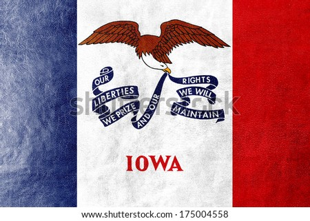 Iowa State Flag painted on leather texture - stock photo