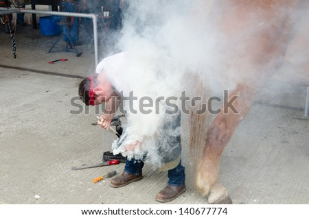IPSWICH, UK - MAY 30: A blacksmith shoeing a horse on the Suffolk show held on May 30, 2013 in Ipswich, UK. It is an annual farming and agricultural show with daily revenue over £500000 in 2012. - stock photo