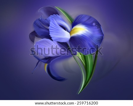 iris flower painted on blue