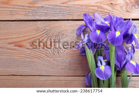 Iris on an old wooden background. Selective focus. Copy space background - stock photo
