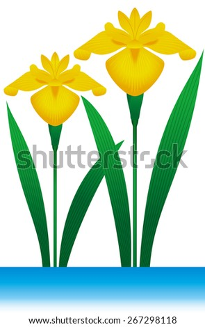 Iris. Seamless pattern. Flower that symbolizes the day of Japanese children. May 5 Japan Annual Event. Children's Day (Boys' Festival) - stock photo