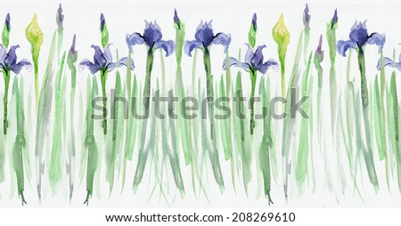 Irises background, watercolor composition. Flower backdrop. Decoration with blooming irises, hand-drawing. Illustration. Border seamless. Seamless floral borders. Stripe with irises  - stock photo