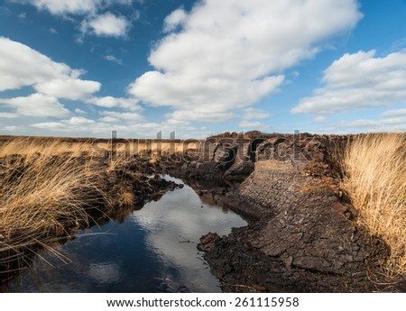 Irish peat bog  - stock photo