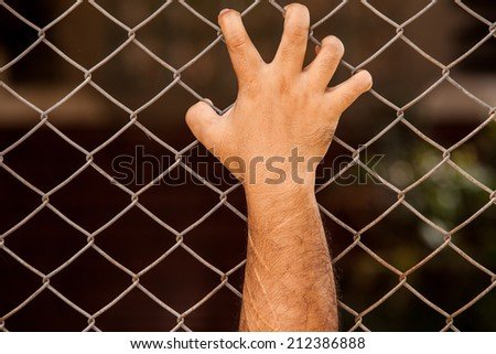 Iron chain fence  background.