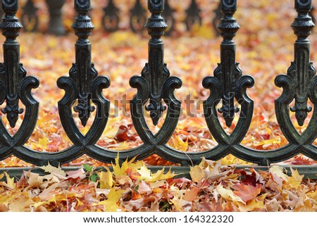 Iron Fence and Autumn Leaves - stock photo