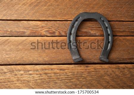 iron horseshoe in the photo - stock photo