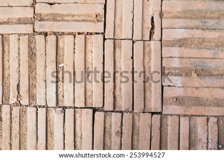 irregular pattern of old bricks on the floor with dirt and organic waste.