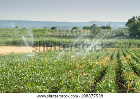 Irrigating a farm field of soy beans - stock photo