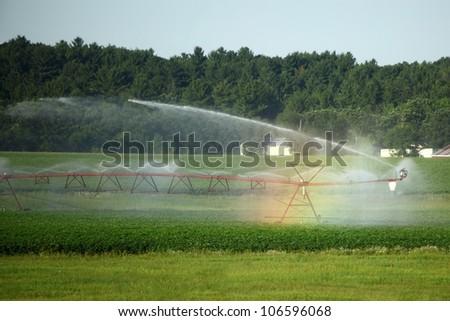 Irrigation - stock photo