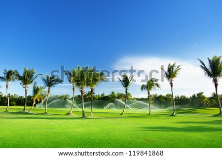 Irrigation golf course in Dominican republic - stock photo