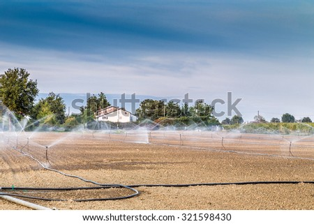 Irrigation of plowed and sown agricultural field with sprinklers - stock photo