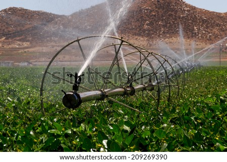 Irrigation sprinklers watering the fields in Southern California. - stock photo