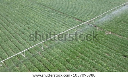 Irrigation system at work - Aerial Image. Irrigation is the application of controlled amounts of water at needed intervals