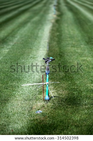 Irrigation system for grass