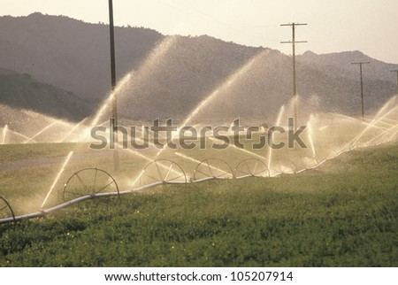 Irrigation system in the San Joaquin Valley, CA - stock photo