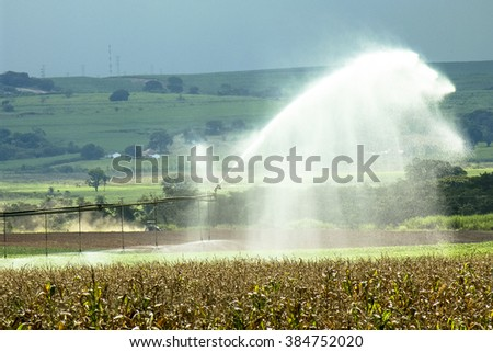 irrigation system watering a farm field of corn and soy, in Brazil - stock photo
