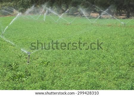 Irrigation systems. Day light - stock photo