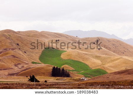 Irrigation watered green field in dry grassland hills yellow from drought due to global warming climate change