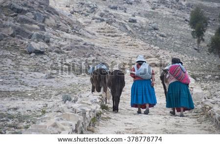 ISLA DEL SOL, BOLIVIA - NOVEMBER 2008 : A family walks home after a hard day's work . Isla del Sol, Bolivia . - stock photo