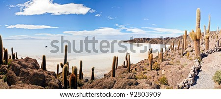 island in Salar de Uyuni, Bolivia - stock photo