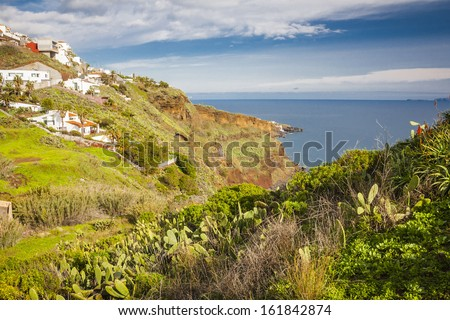 island madeira in sunny day (landscape near Funchal - the capital of Madeira), Portugal