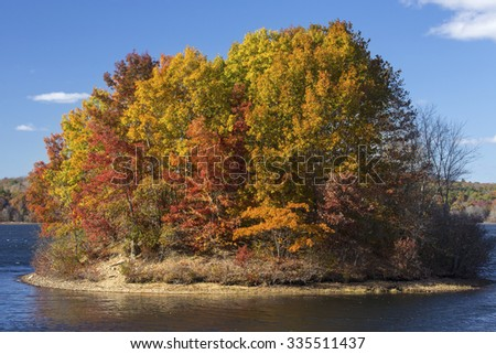 Island of brilliant fall foliage in the lake at Mansfield Hollow reserve in Connecticut on a sunny day with a blue sky.