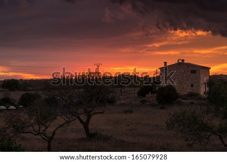 Island of Majorca, Spain, Traditional finca and olive trees sunset  - stock photo