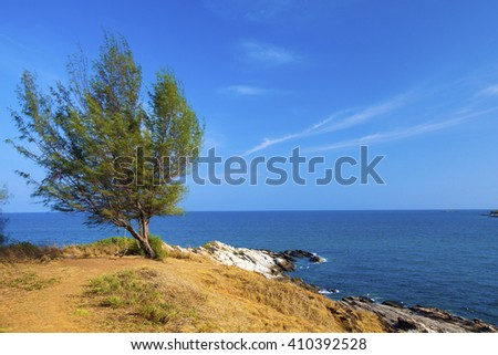 Island - Samet Island - Koh Samet - Rayong - Thailand , tree with a swing at the island