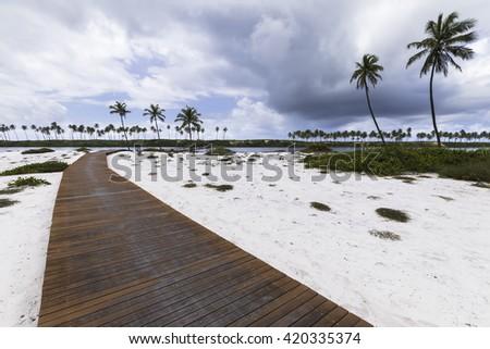 island with beautiful path in sauípe coast tropical paradise in Bahia Brazil - stock photo