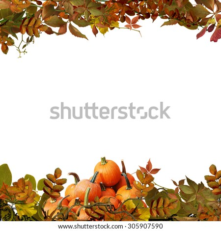 Isolated autumn leaves and pumpkins on a white background - stock photo