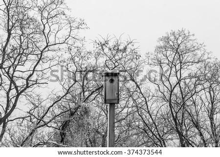 Isolated bird house. Outdoor bird feeder. Outside bird feeder nest. Winter tree background. Tree branches background. Winter forest landscape. Winter nature. White cloudy sky. Black and white.  - stock photo