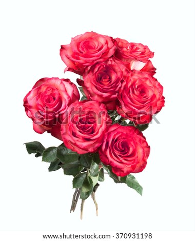 Isolated bouquet of red roses on the white background - stock photo
