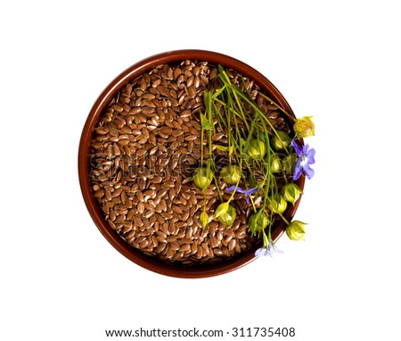 isolated bowl with flax seeds and dry flax plant capsules. View from above. - stock photo