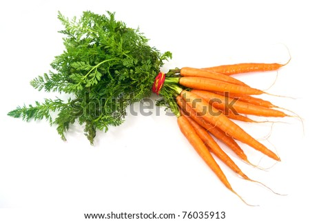 Isolated Bunch of carrots - stock photo