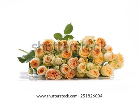 Isolated bunch of peach roses on a white background - stock photo