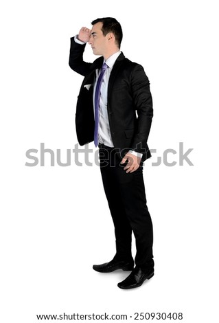 Isolated business man looking side - stock photo