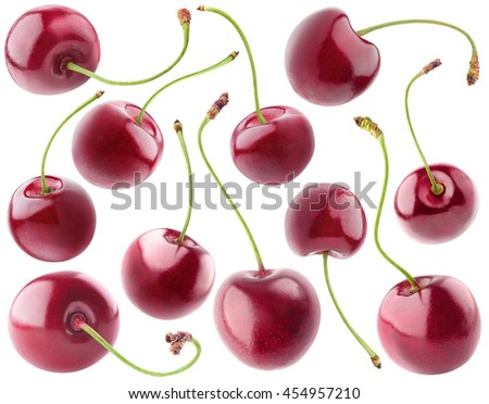 Isolated cherries. Collection of sweet cherry fruits isolated on white background with clipping path