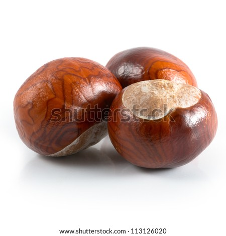 Isolated chestnuts on a white background - stock photo