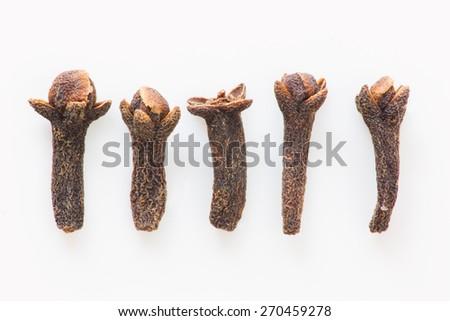 Isolated cloves close up still life - stock photo